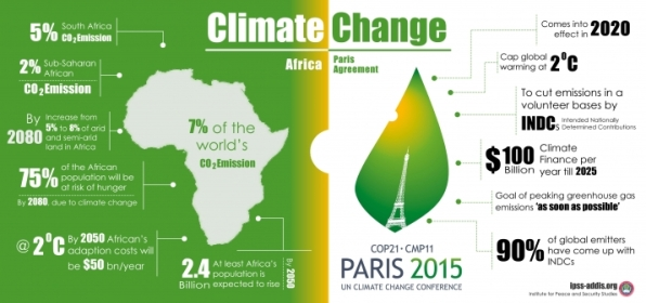 COP 21 Image
